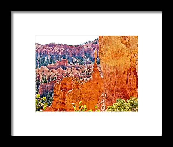 View At Beginning Of Navajo Trail In Bryce Canyon Framed Print featuring the photograph View At Beginning Of Navajo Trail In Bryce Canyon National Park-utah by Ruth Hager