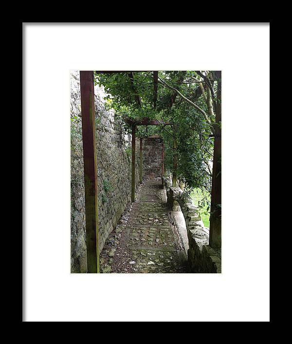 Photograph Framed Print featuring the photograph Vine-covered Passage by Nicole Parks