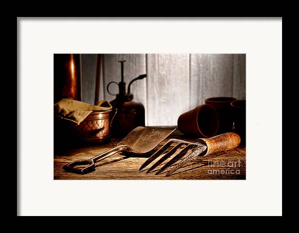 Gardening Framed Print featuring the photograph Vintage Gardening Tools by Olivier Le Queinec