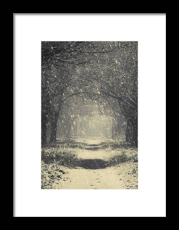 Christmas Framed Print featuring the photograph Vintage Winter by Svetlana Sewell