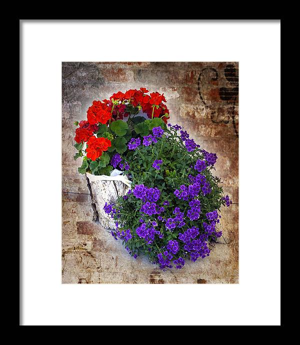 Flowers Framed Print featuring the photograph Violets And Geraniums On The Bricks by William Havle