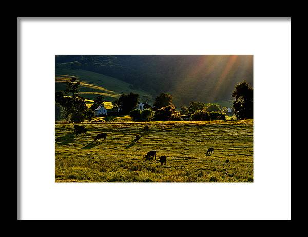 Virginia Framed Print featuring the photograph Virginia Countryside by Jill Jacobs