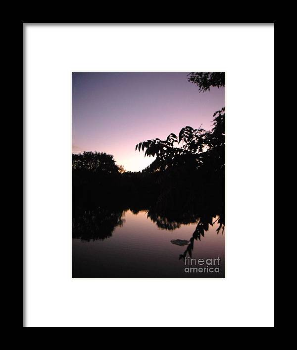 Sun Framed Print featuring the photograph Vision In Purple by Britta Havens
