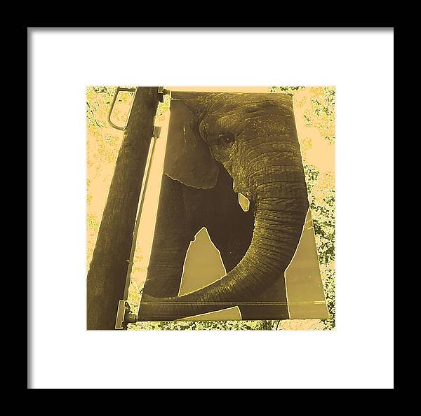 Zoo Framed Print featuring the photograph Visit The Zoo by Patricia Januszkiewicz
