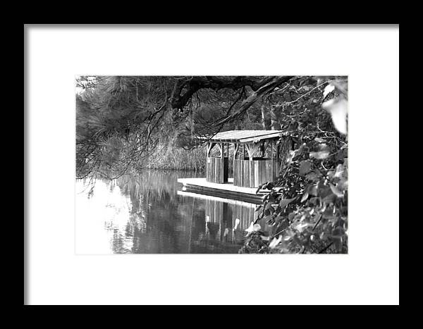 Float Framed Print featuring the photograph Visit To The Gator Hole by Jennifer Stockman