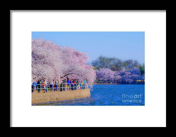 2012 Centennial Celebration Framed Print featuring the photograph Visitors To The Blooms On The Basin by Jeff at JSJ Photography