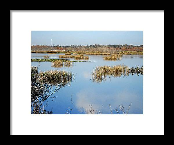 Landscape Photography Framed Print featuring the photograph Wading Bird Way 007 by Chris Mercer