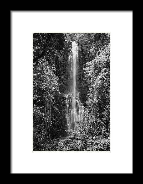 Wailua Falls Road To Hana Maui Hawaii Waterfall Waterfalls Water Landscape Landscapes Tree Trees Vine Vines Fern Ferns Nature Waterscape Waterscapes Black And White Framed Print featuring the photograph Wailua Falls 2 by Bob Phillips