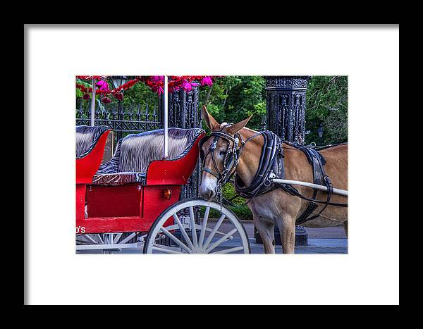 French Framed Print featuring the photograph Waiting by Capt Gerry Hare