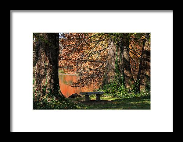 Nature Framed Print featuring the photograph Waiting by Darlene Bushue