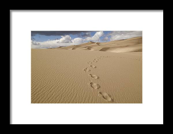 Sand Framed Print featuring the photograph Walkabout by Jerry Mann