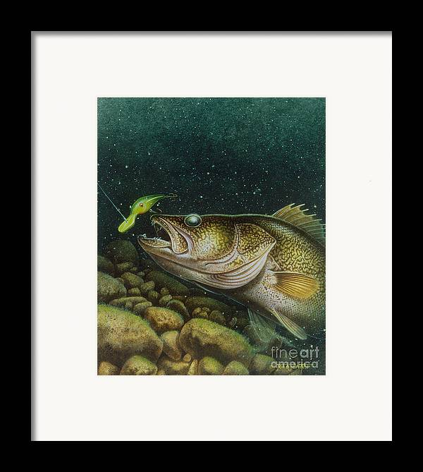 Jon Q Wright Framed Print featuring the painting Walleye And Crank Bait by JQ Licensing
