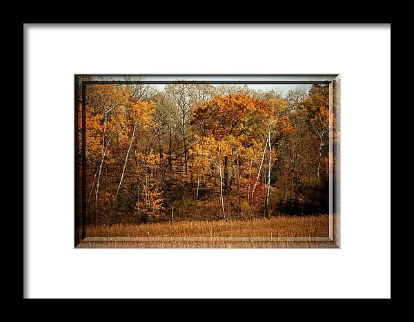 Autumn Framed Print featuring the photograph Warm Autumn Glow by Susan McMenamin