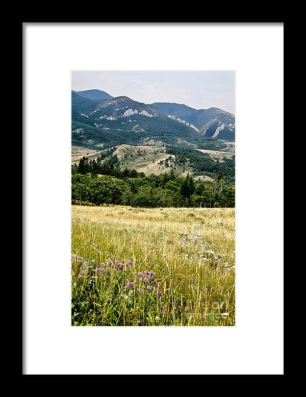 Wilderness Framed Print featuring the photograph Washake Wilderness by Kathy McClure