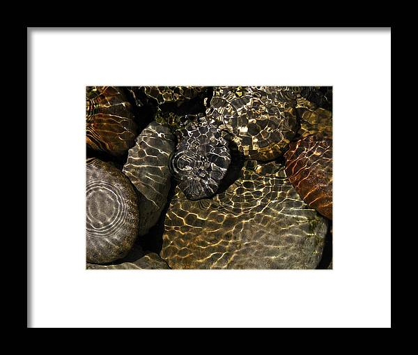 Still Life Framed Print featuring the photograph Water Rocks by Liz Hill