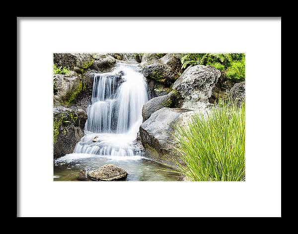Cascade Framed Print featuring the photograph Waterfall 4 by Leigh Anne Meeks