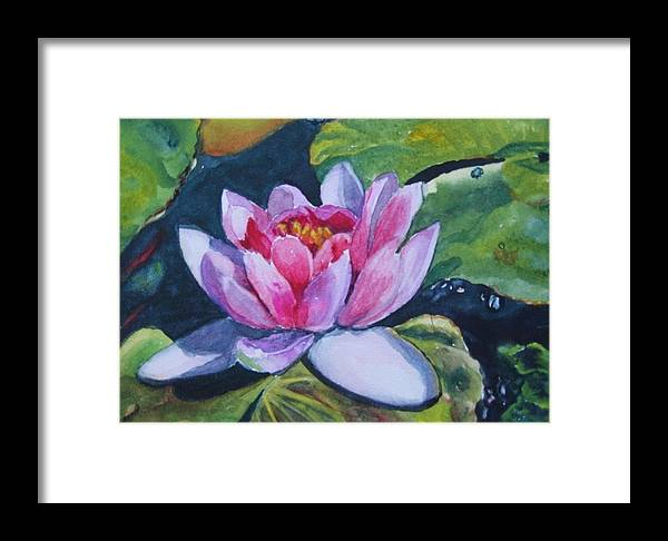 Floral Framed Print featuring the painting Waterlily by Vicki Brevell