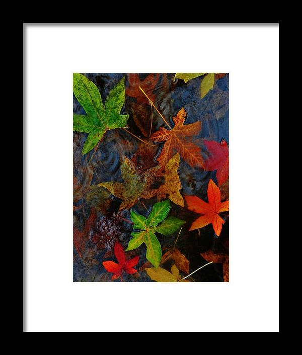 Nature Framed Print featuring the photograph Waves And Color by Charles Lucas