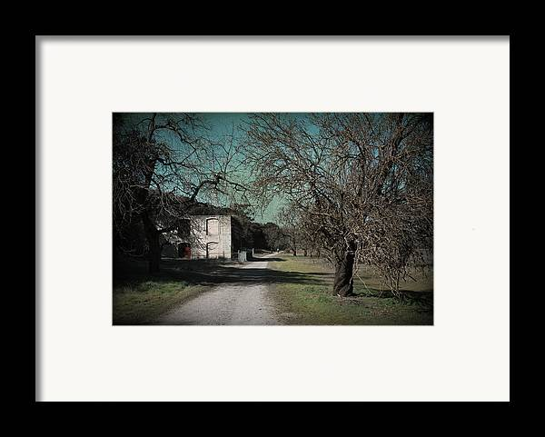 Sycamore Grove Park Framed Print featuring the photograph Way Back When by Laurie Search