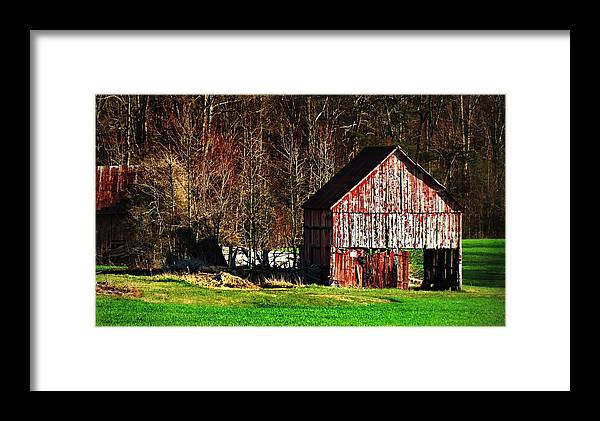 Barn Red Barn Barns Fields County Landscape Rural Trish Clark Maryland Aged Historic Plantation Land Farmers Rustic Aged Farmstead Agriculture Old Historic Maryland Framed Print featuring the photograph Weathered by Trish Clark