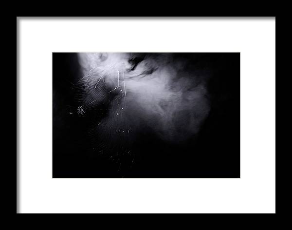 Spider Web Framed Print featuring the photograph Web Of Smoke by La Dolce Vita
