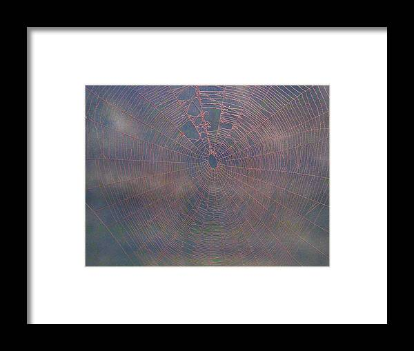 Spiderwebs Framed Print featuring the mixed media Web154 by Kenneth Albury