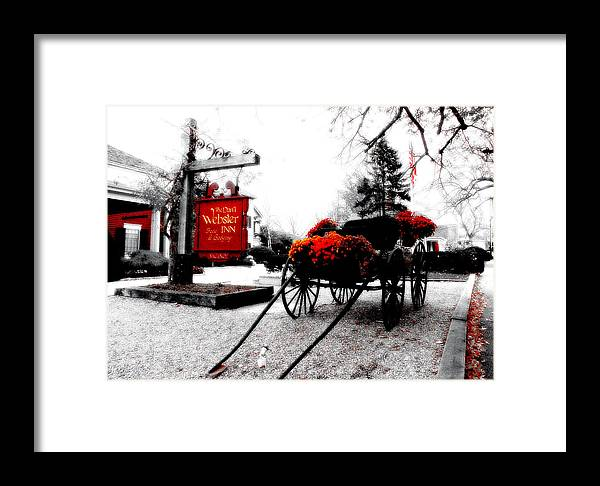 Cape Cod Framed Print featuring the photograph Webster by David DeCenzo