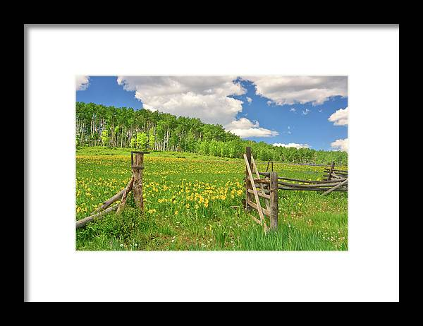 Tranquility Framed Print featuring the photograph Welcome To Heaven On Earth by Amy Hudechek