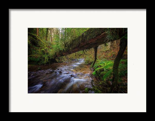 Oregon Framed Print featuring the photograph West Humbug Creek by Everet Regal