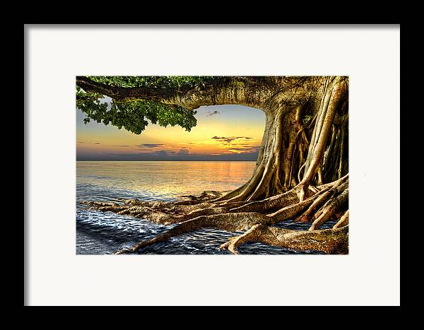 Fine Framed Print featuring the photograph Wet Dreams by Debra and Dave Vanderlaan