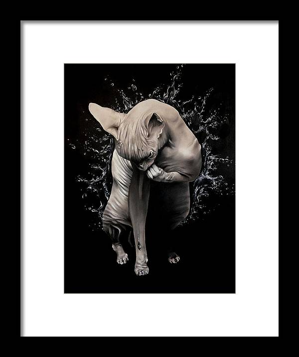 Original Framed Print featuring the painting Wet Sphynx by Stephanie LeVasseur