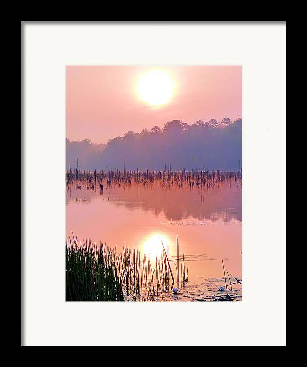 Alabama Framed Print featuring the photograph Wetlands Sunrise by JC Findley