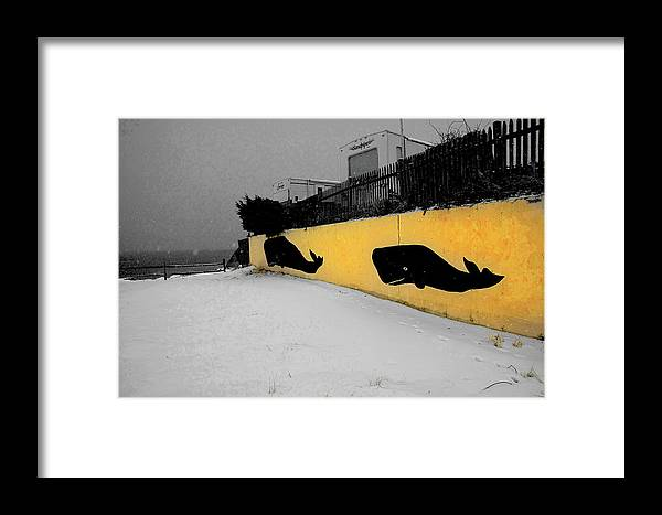 Cape Cod Framed Print featuring the photograph Whale Wall by David DeCenzo