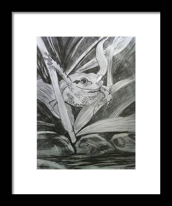 Frog Framed Print featuring the mixed media What's For Lunch by Simon Mayhew