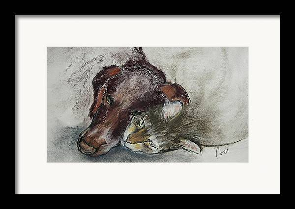 Dog Framed Print featuring the drawing Whisker To Whisker by Cori Solomon