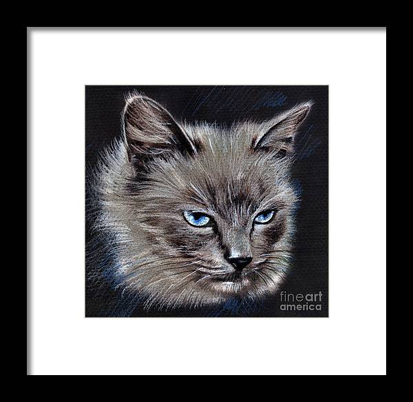 Cat Portrait Print On Canvas Framed Print featuring the drawing White Cat Portrait by Daliana Pacuraru