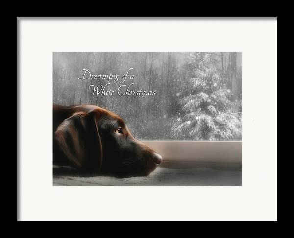Sienna Framed Print featuring the photograph White Christmas by Lori Deiter