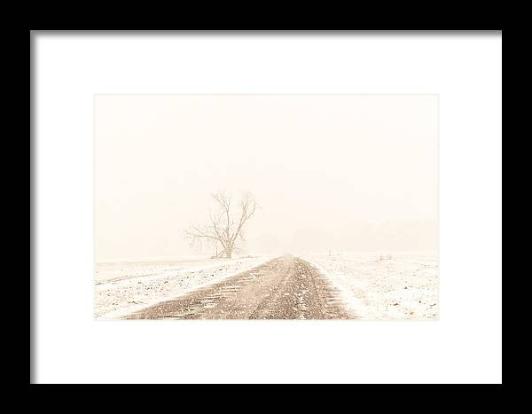 Tree Framed Print featuring the photograph White Out by Reflections by Brynne Photography