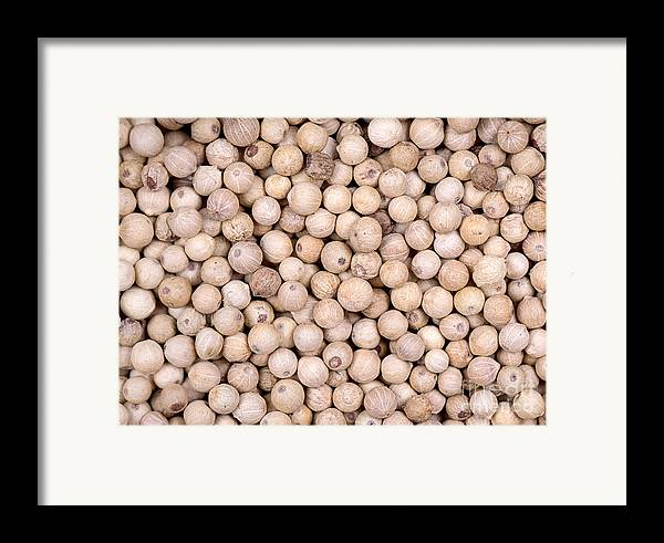 White Framed Print featuring the photograph White Peppercorn Background by Jane Rix