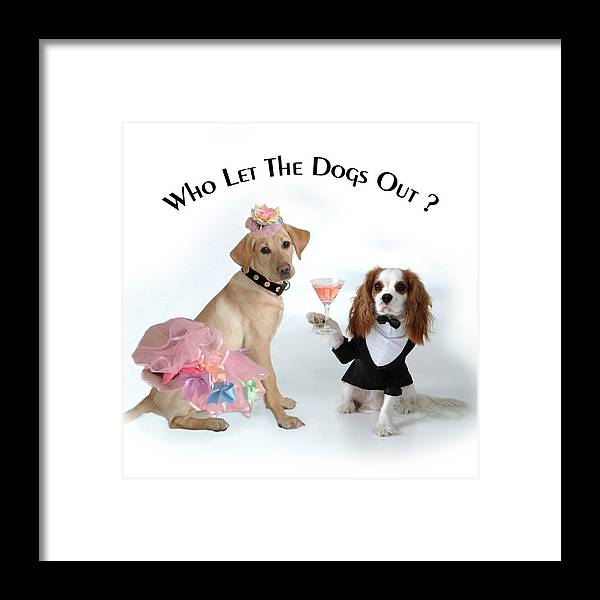 Labrador Framed Print featuring the photograph Who Let The Dogs Out by  Diane Hagler 34b03f022