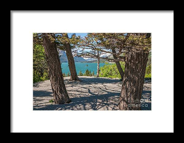 Al Andersen Framed Print featuring the photograph Wild Goose Island 2 by Al Andersen