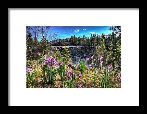 Landscape Framed Print featuring the photograph Wildflowers And Old Bridge by Derek Haller