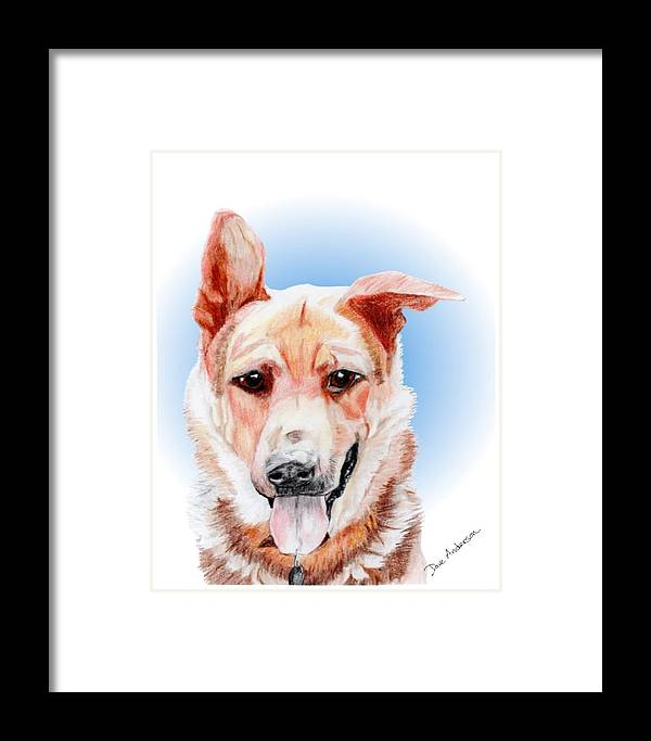 Dog Framed Print featuring the drawing Willy A Former Shelter Sweetie by Dave Anderson
