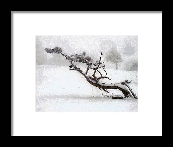 Nature Framed Print featuring the digital art Windswept by Gun Legler