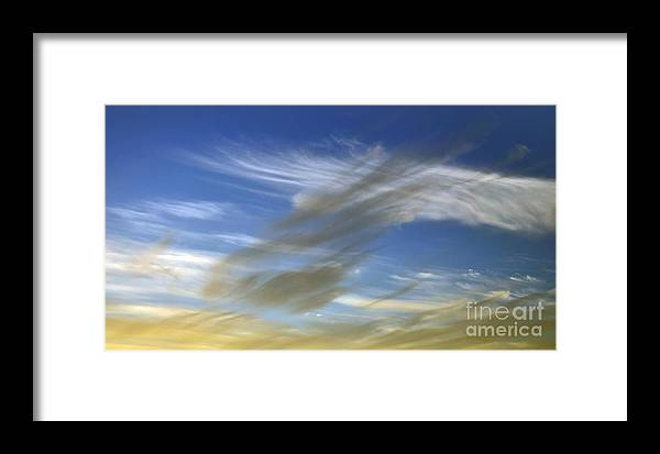Photography Framed Print featuring the photograph Windswept by Kaye Menner