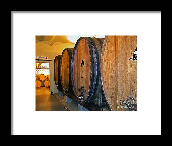 Wine Vats Framed Print featuring the photograph Wine Vats by Tim Holt