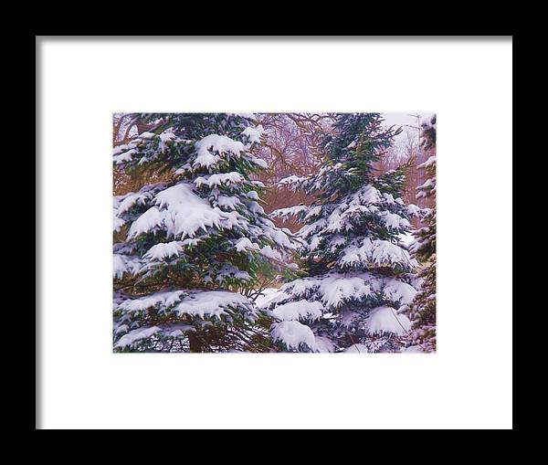 Winter Framed Print featuring the photograph Winter 5 by Dave Dresser
