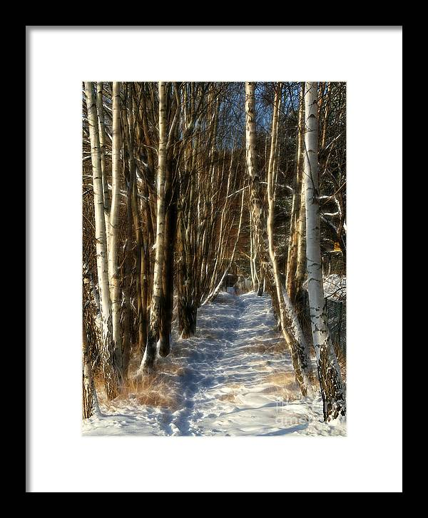 Baar Framed Print featuring the photograph Winter Birches by Lutz Baar