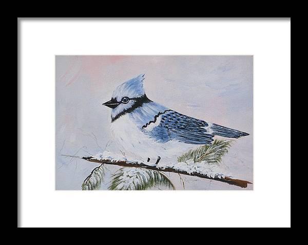 Bird Framed Print featuring the painting Winter Bluejay by Phyllisann Arthurs