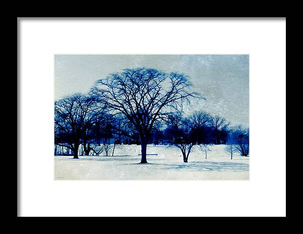 Blue And White Framed Print featuring the photograph Winter Blues by Shawna Rowe